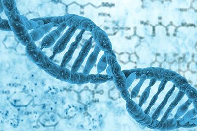 জঙ্গিবাদের জন্য কি আমাদের DNA দায়ী