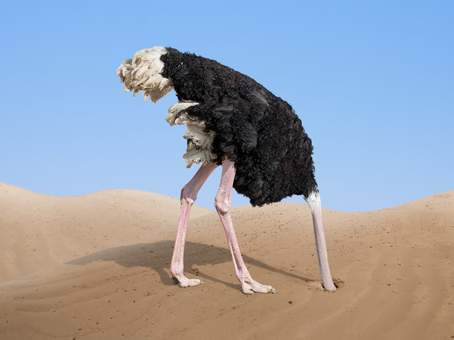 The Ostrich Algorithm